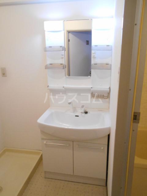 フジレジデンス 202号室の洗面所