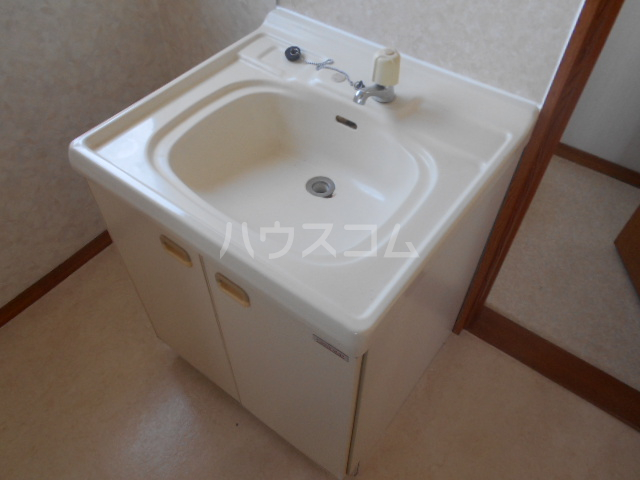 スカイコートA 202号室の洗面所