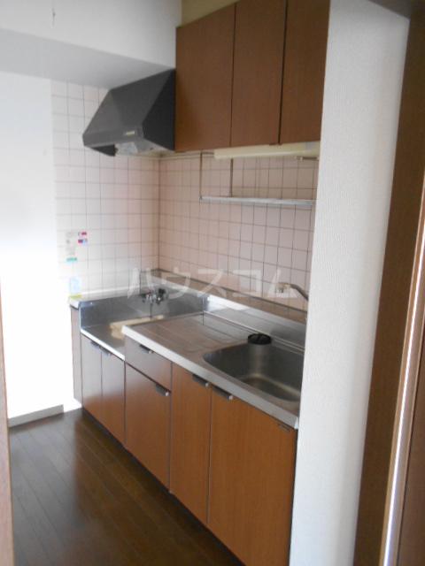 グレースヒル足柄 302号室のキッチン