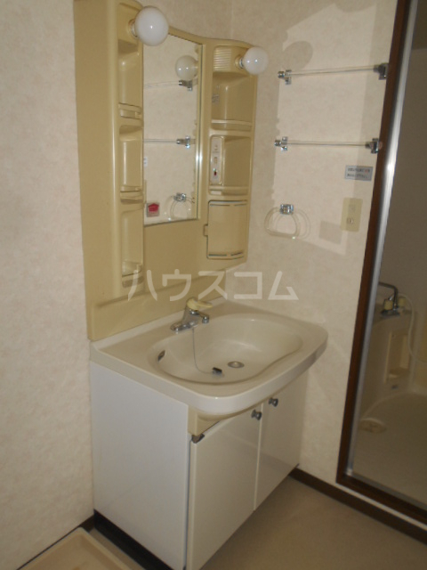 グレースヒル足柄 302号室の洗面所