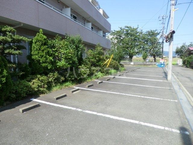 ピュアコート・すみれ 303号室のセキュリティ
