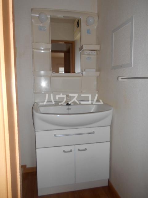 ランドロードクニヤンⅡ 02010号室の洗面所