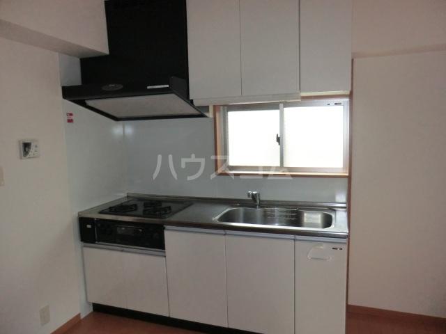グランドスイート箱根 203号室のキッチン