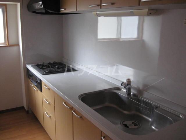 WING湯河原 206号室のキッチン