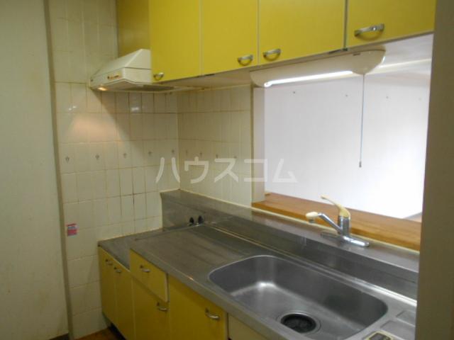 アドバンテージヴィラ岡津 201号室のキッチン