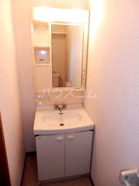 コーポハマ氷川 202号室の洗面所
