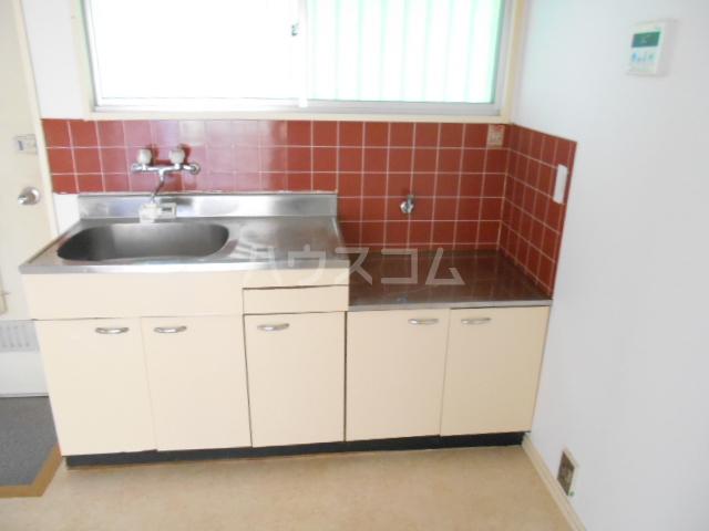 エクセルオタケ 203号室のキッチン