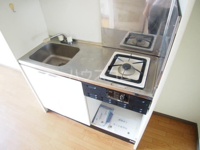 アミューズメントⅢ 101号室のキッチン