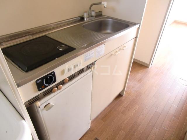 リバーサイド斉藤 202号室のキッチン