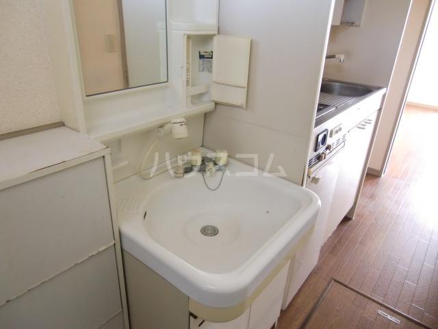 リバーサイド斉藤 202号室の洗面所