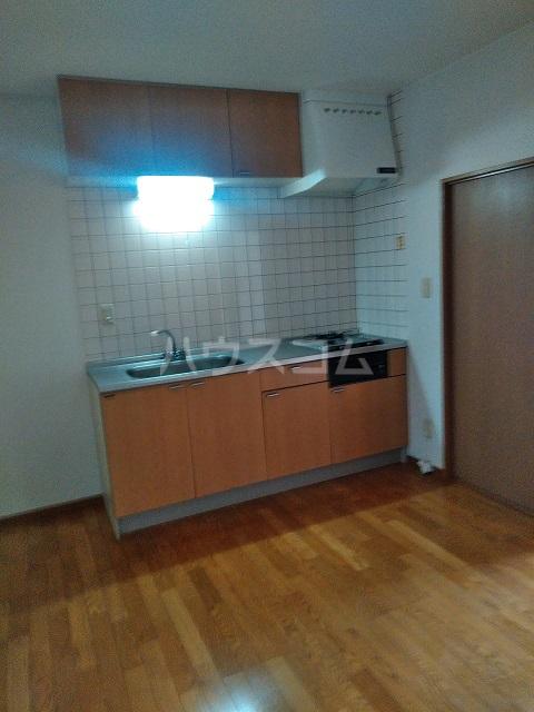 ハイツクリフサイド 202号室のキッチン