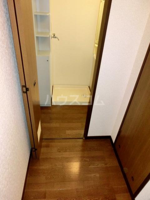 ブルースカイサニークレスト 305号室の玄関