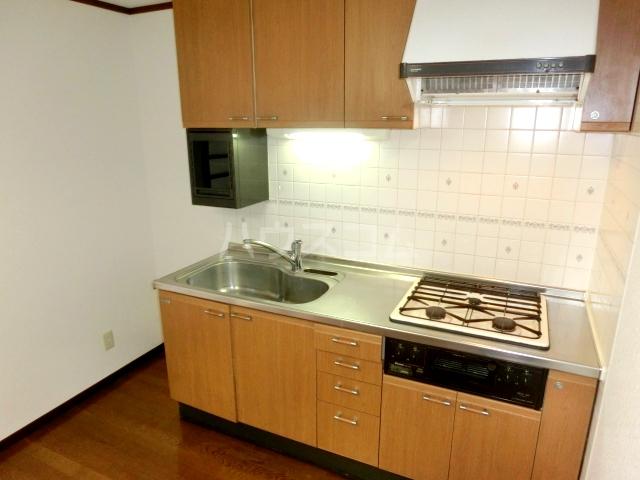 ブルースカイサニークレスト 305号室のキッチン