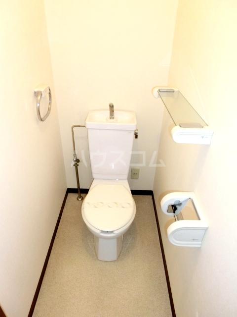 ブルースカイサニークレスト 305号室のトイレ