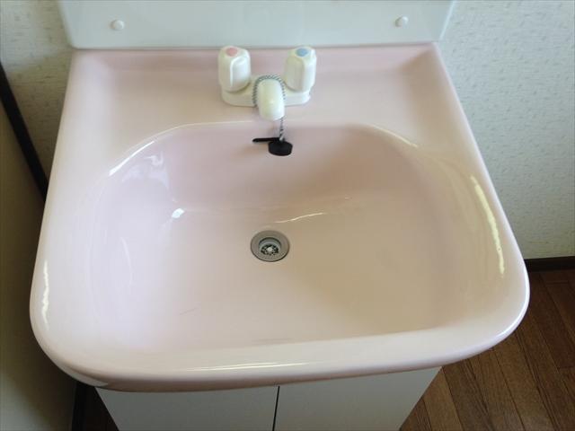 メゾンドスギタ 102号室の洗面所