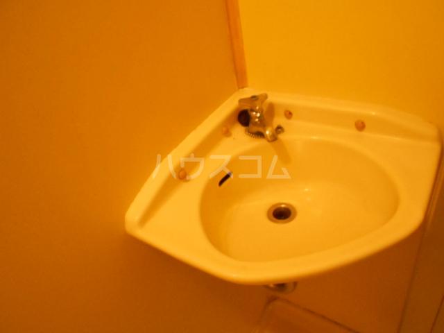 グリーンヒル 103号室の洗面所