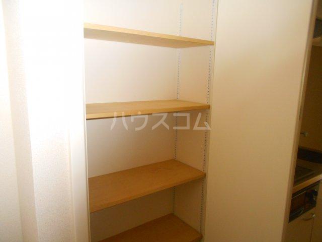 COURT AZALEA 203号室の収納