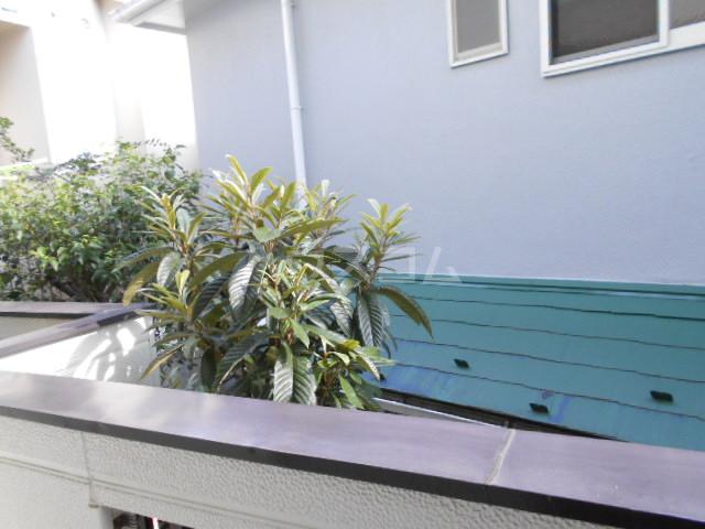 コーポ市瀬NO2 202号室の景色