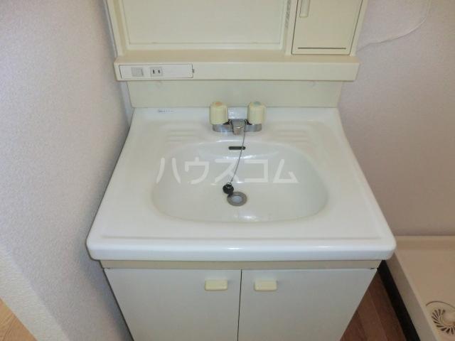 セントラルパディ 307号室の洗面所