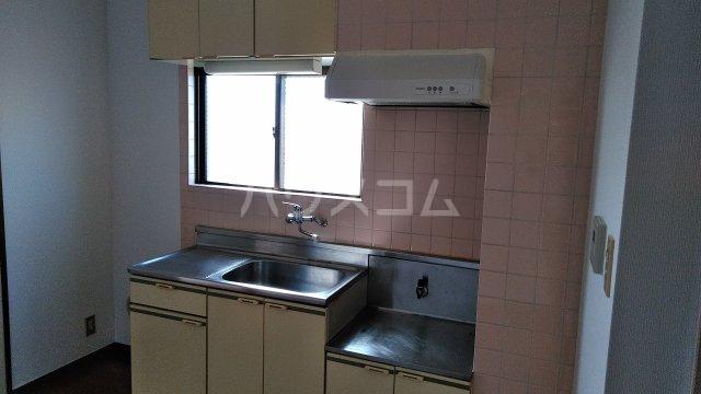 ラフォーレ白山 208号室のキッチン