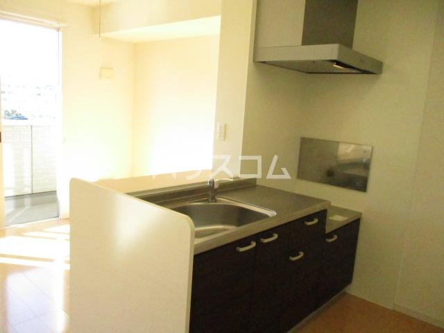 ヒラリバー アネックス 205号室のキッチン
