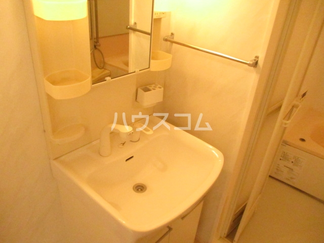 ヒラリバー アネックス 205号室の洗面所