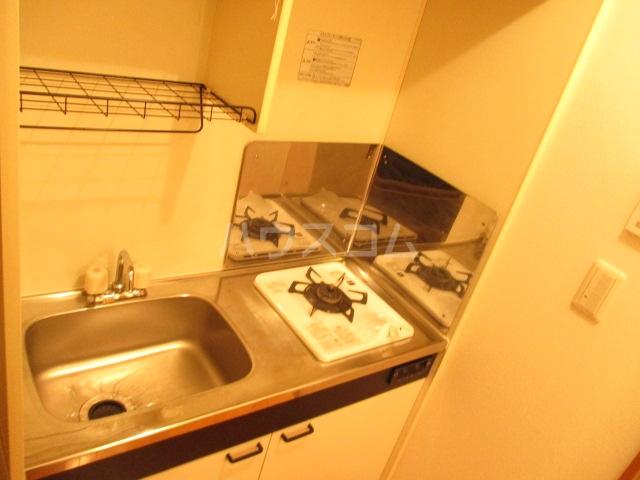 アメニティ大巌寺 101号室のキッチン
