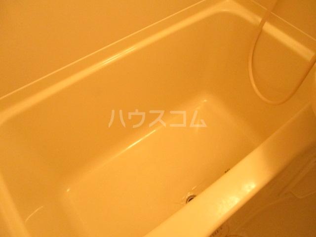 アメニティ大巌寺 101号室の風呂
