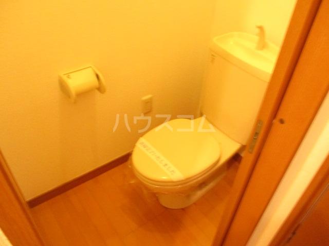 アメニティ大巌寺 101号室のトイレ