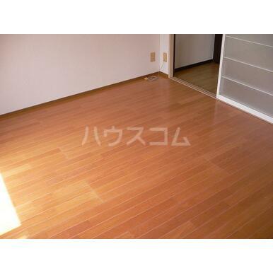 シャトレA 202号室の居室