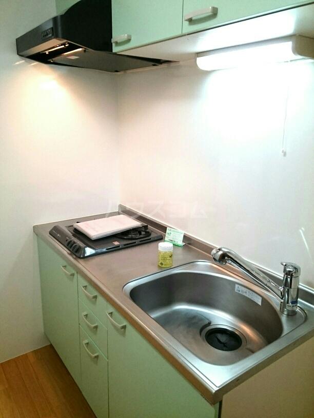 シャポー・ドゥ・パイユ 03020号室のキッチン