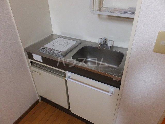 エクセレント21石神井公園 202号室のキッチン