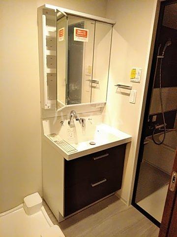 ミヤビヒルズ西池袋 307号室の洗面所