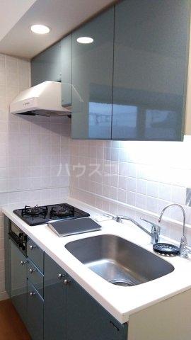 ラナイクラシコ 302号室のキッチン
