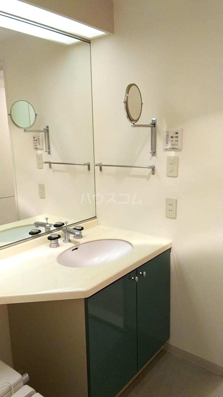 ラナイクラシコ 302号室の洗面所