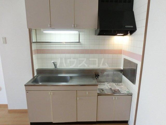 ドエルフォーラム五番館 202号室のキッチン
