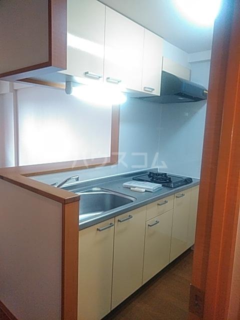 フェイム イッサ 403号室のキッチン