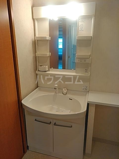フェイム イッサ 403号室の洗面所