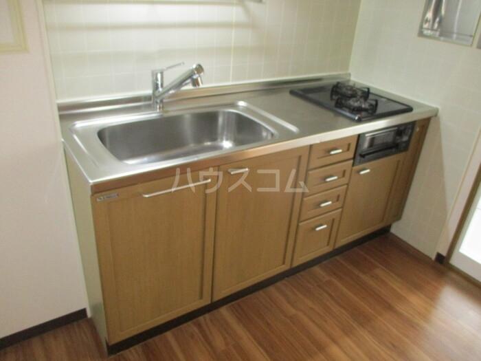 ドゥリームアイ・エス 303号室のキッチン