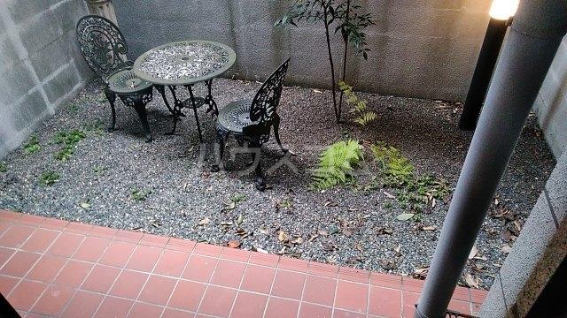 ジオコート桂 101号室の庭