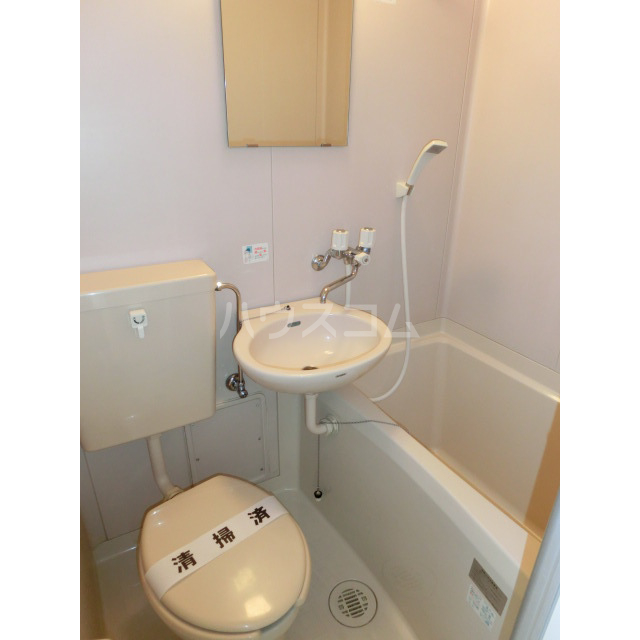 メゾン・ド・ラフィーネ 203号室の風呂