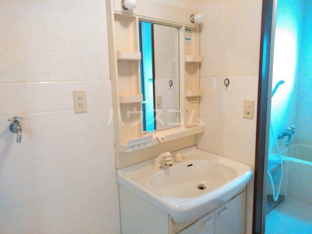 シャローム石田 302号室の洗面所