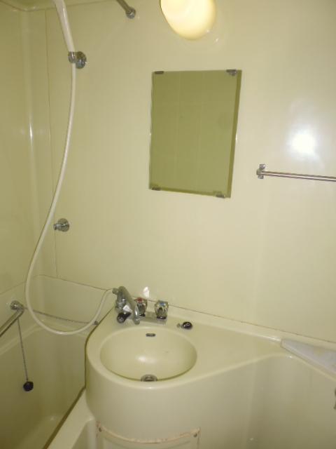 グリーンヒル山田 205号室の洗面所