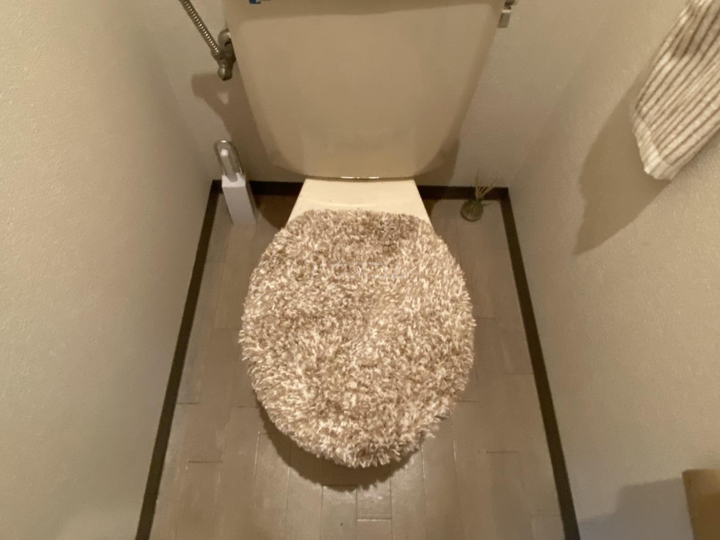 フリーピア鳴滝2 207号室のトイレ