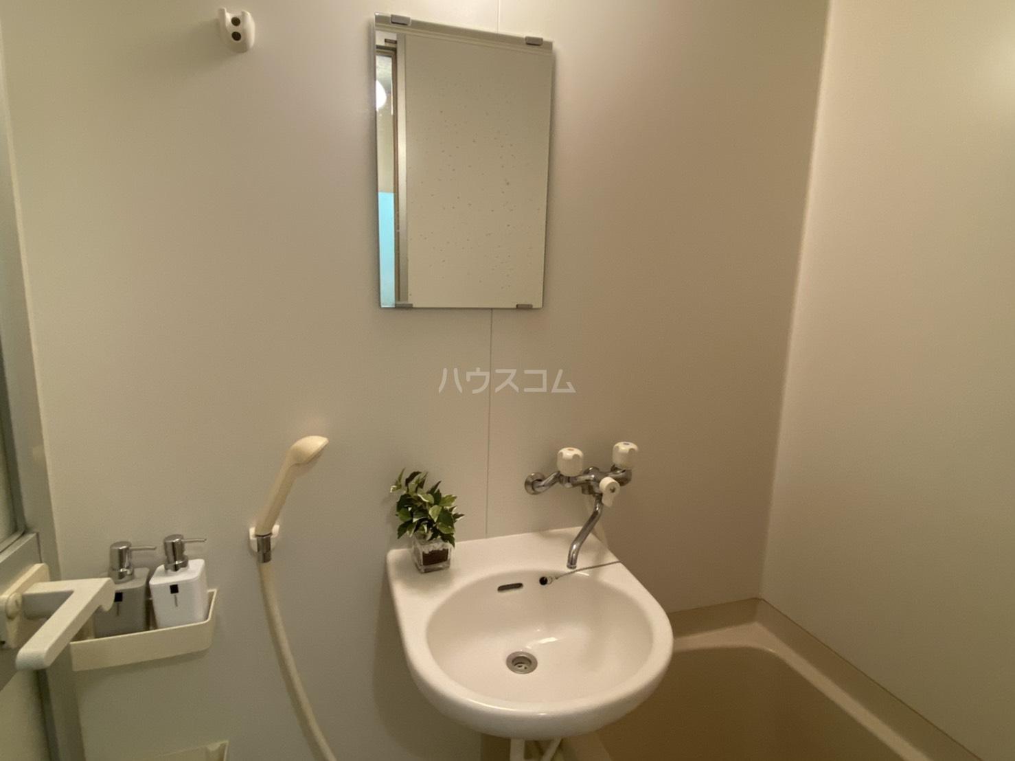 フリーピア鳴滝2 207号室の洗面所