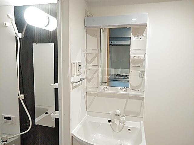 エスカーサ京都四条梅津 401号室の洗面所