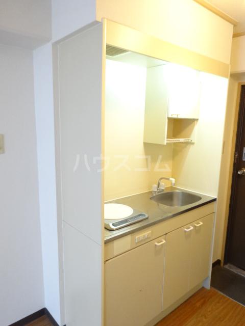 RIN,Sコーポラティヴハウス 307号室のキッチン