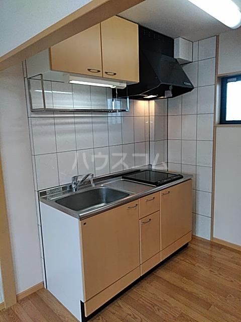 エクセ・コート 202号室のキッチン