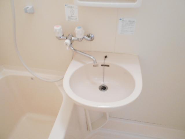 グリーンコートランザン 203号室の洗面所