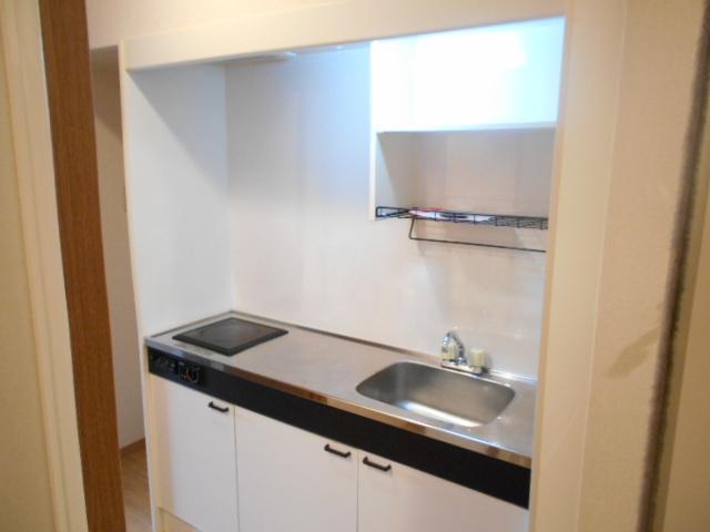 グリーンコートランザン 203号室のキッチン